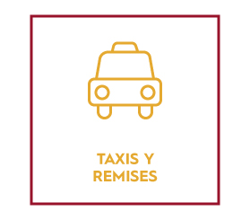 Taxis y remises